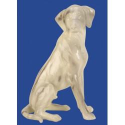 Dekorace pes