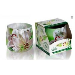 Svíčka-lilie