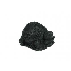 Šungit - chytrá želva